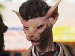 Seven Psychopaths: Seven Psychocats (Spoof Trailer)