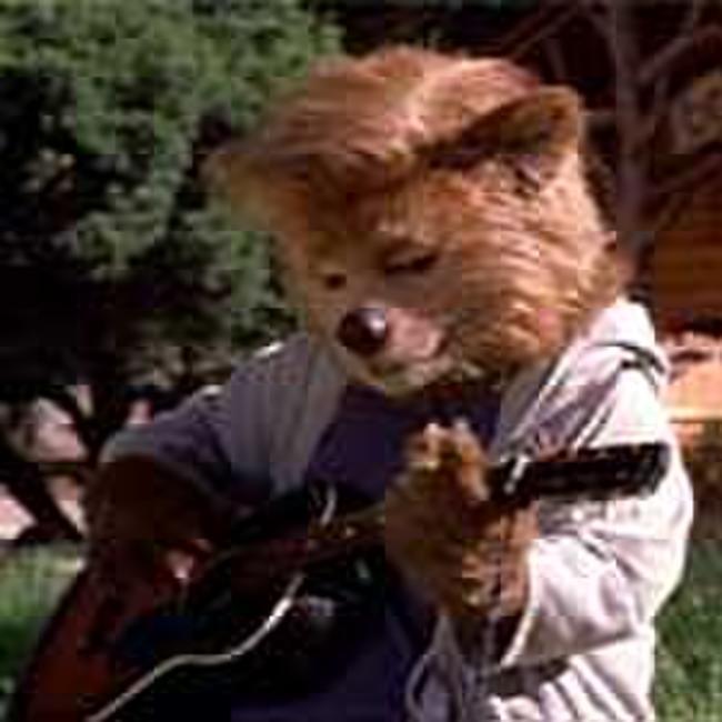 the country bears 2002 movie photos and stills fandango