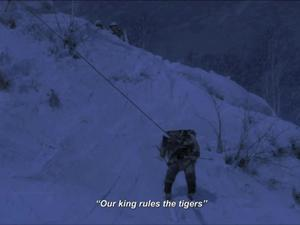The Taking Of Tiger Mountain (Us)