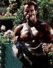 <p> Arnold Schwarzenegger Career Retrospective</p>