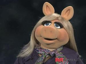 Exclusive: The Muppets - Miss Piggy DVD Interview