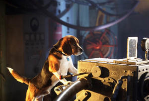 All About Animals: Our Favorite Flicks with Cuddly Creatures