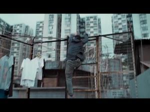 Kung Fu Killer (Us)