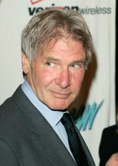 Harrison Ford at the Los Angeles Commission on Assaults Against Women's 34th Annual Humanitarian Awards.