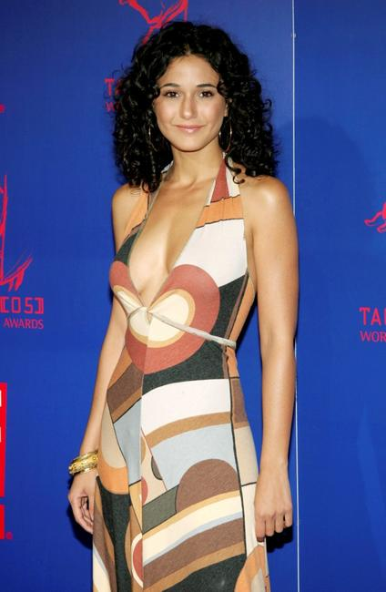 Emmanuelle Chriqui at the 5th Annual Taurus World Stunt Awards.