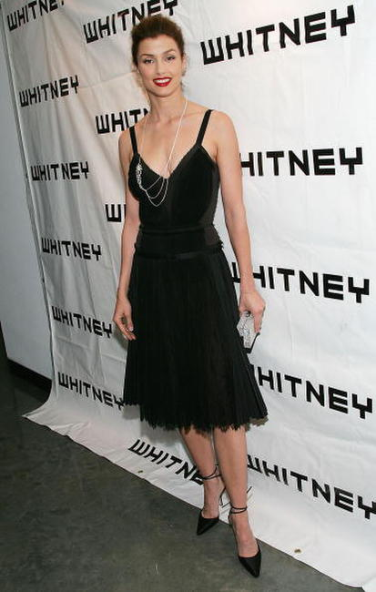 Bridget Moynahan at the Third Annual Whitney Museum Contemporaries Art Party And Auction in N.Y.