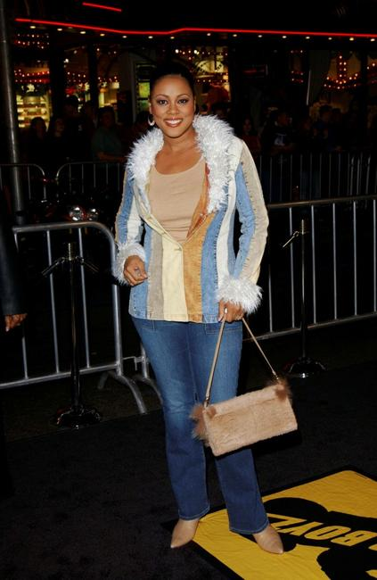Lela Rochon at the Hollywood premiere of