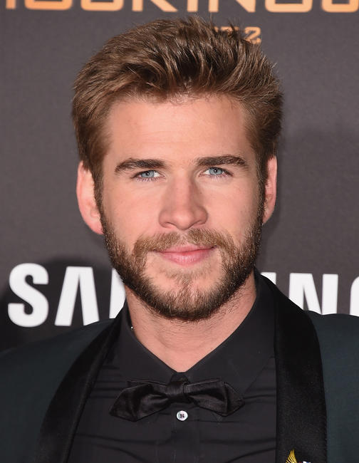Liam Hemsworth at the Los Angeles premiere of
