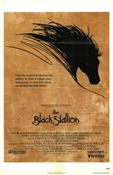 The Black Stallion showtimes and tickets