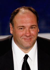 James Gandolfini at the 59th Annual Primetime Emmy Awards.