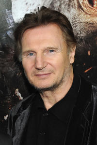 Liam Neeson at the New York premiere of