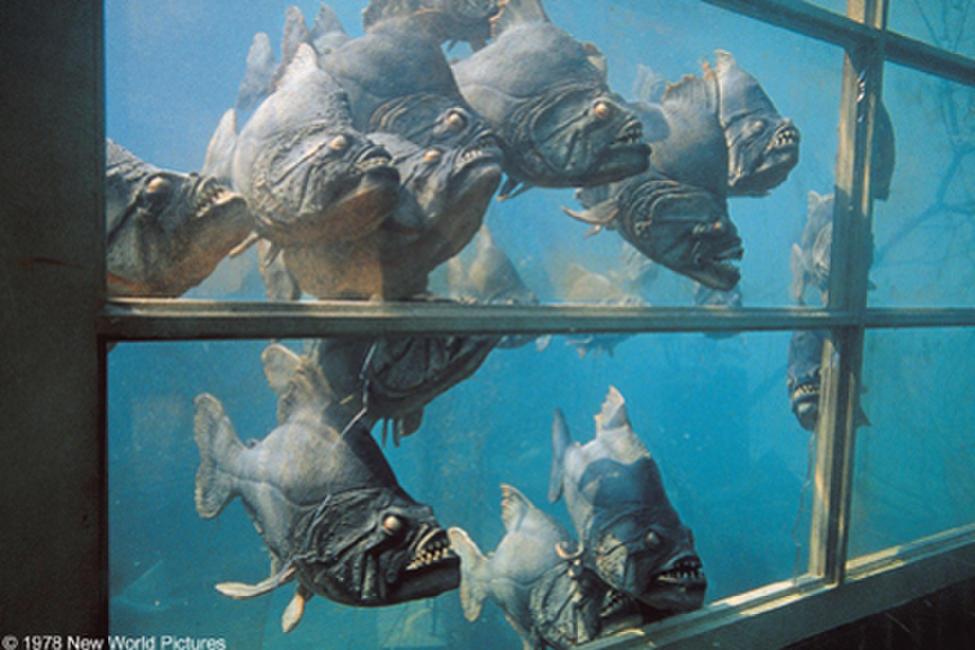 piranha 1978 movie photos and stills fandango