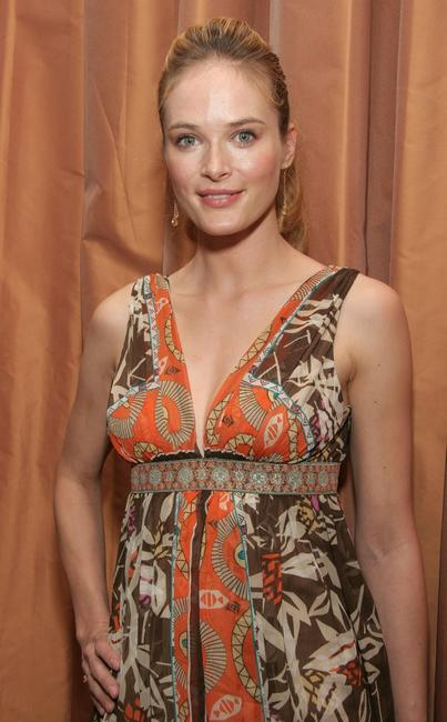 Rachel Blanchard at the 3rd Annual Hollywood Bag Lady Lupus Luncheon.