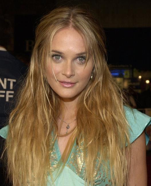 Rachel Blanchard at the world premiere of