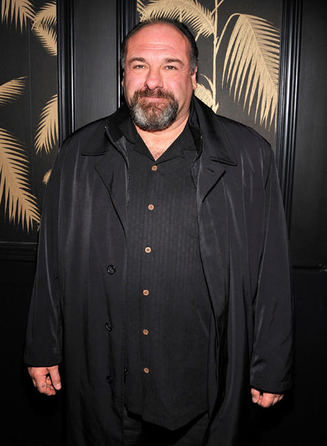 James Gandolfini at the New York premiere of