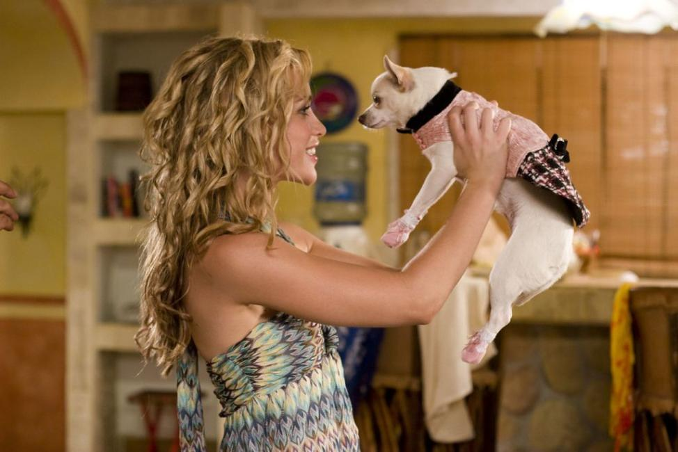 Piper Perabo and Chloe in