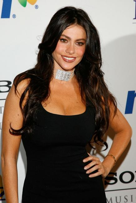 Sofia Vergara at the Legendary Clive Davis Pre-Grammy Party.