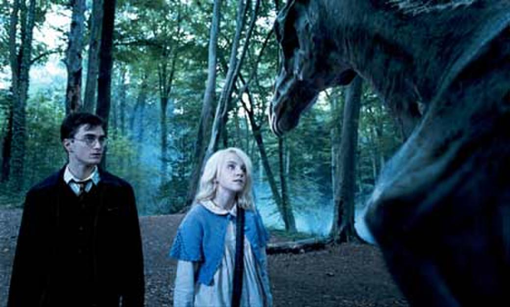 Daniel Radcliffe and Evanna Lynch in