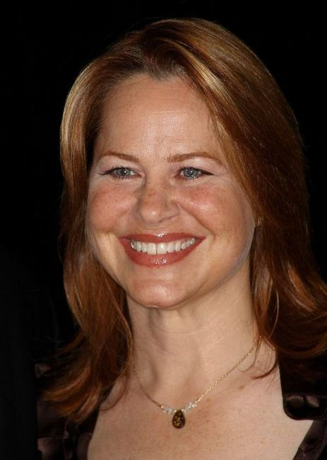 Deirdre Lovejoy at the 24th Annual Television Critics Association Awards Show.