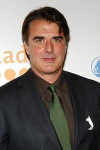 Chris Noth at the 20th Annual GLAAD Media Awards.