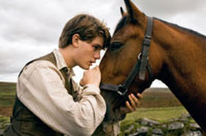 DVD of the Week: 'War Horse' - Plus Giveaway!