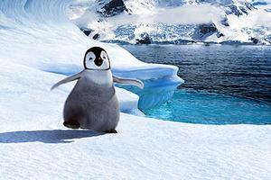 "Baby Mumble (voice of Elizabeth Daily) in ""Happy Feet."""