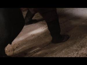 Dragon: Donnie Yen Fight Scene
