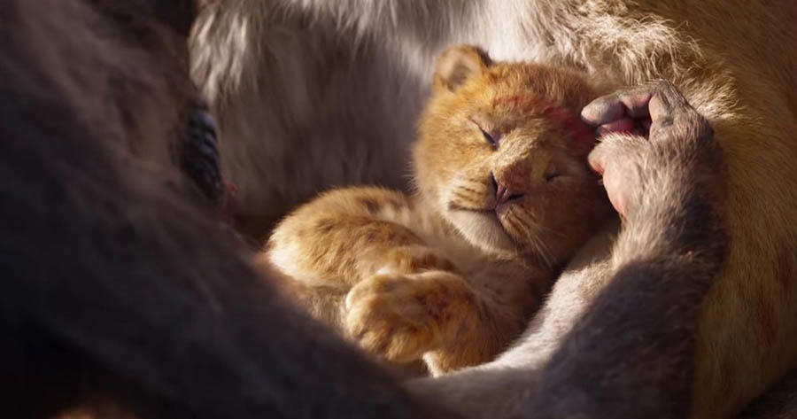 Exclusive Interview: Jon Favreau on 'The Lion King'