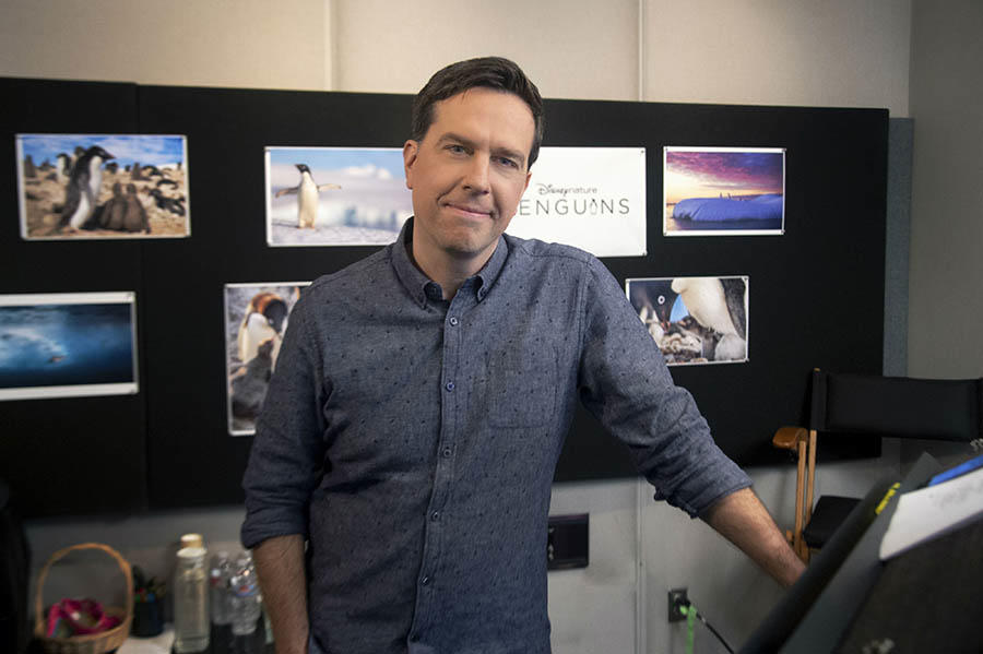 Exclusive 'Penguins' Featurette: All About Steve