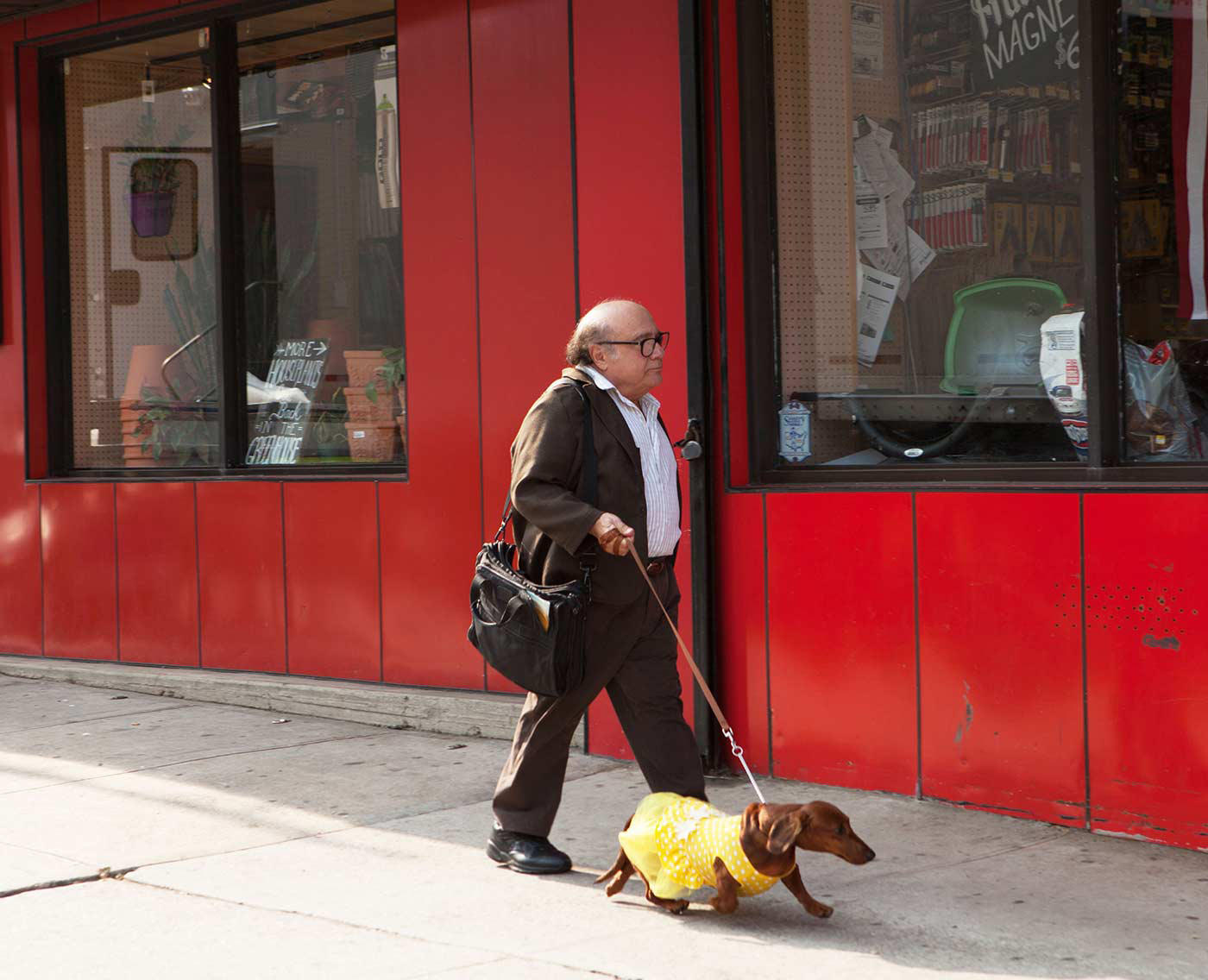 Check out the movie photos of 'Wiener-Dog'