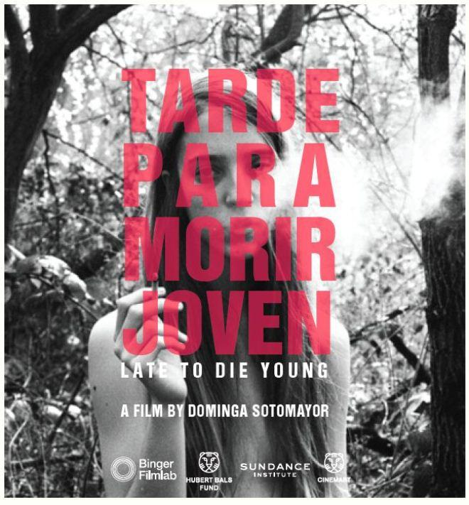 Too Late to Die Young poster art