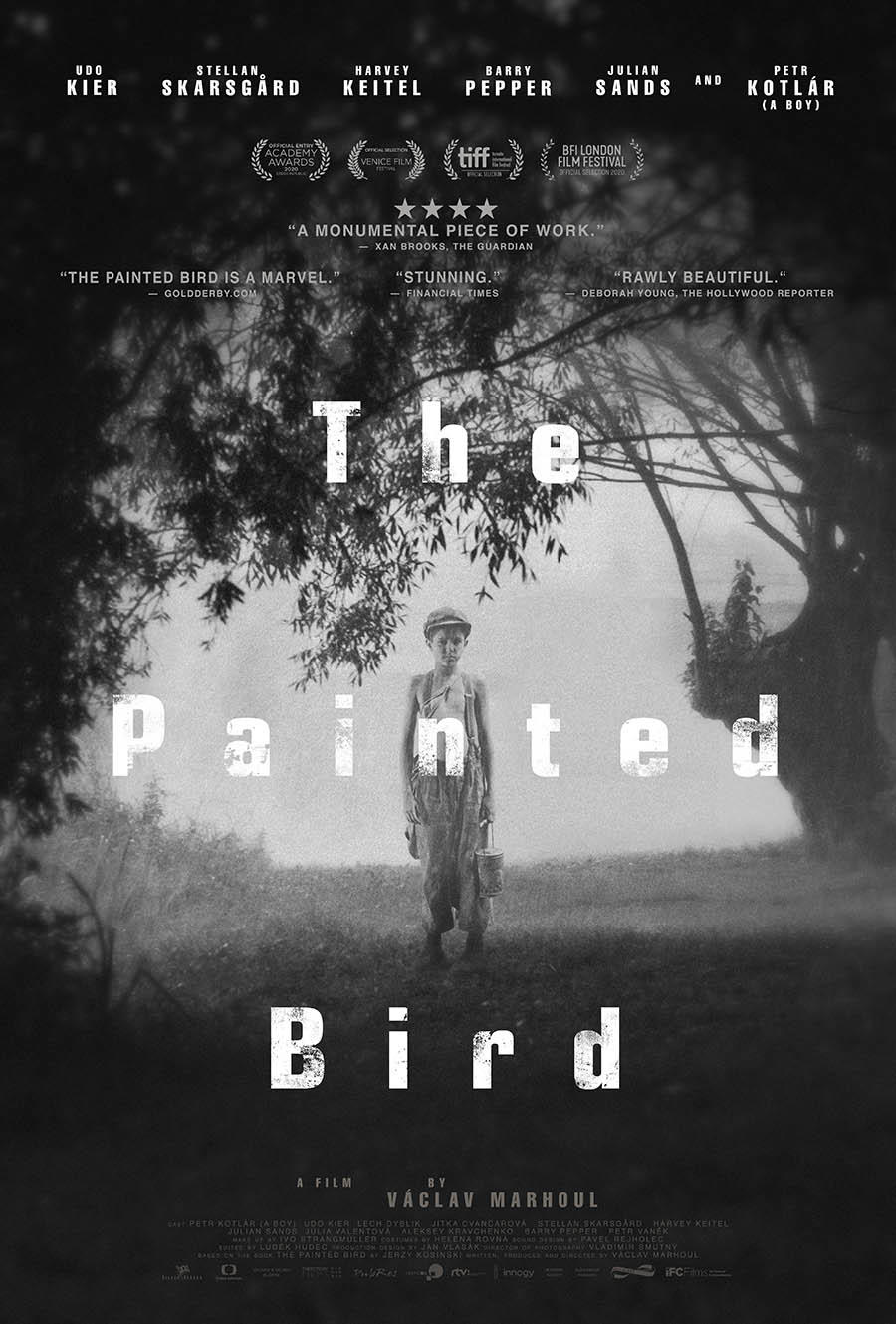 The Painted Bird poster art