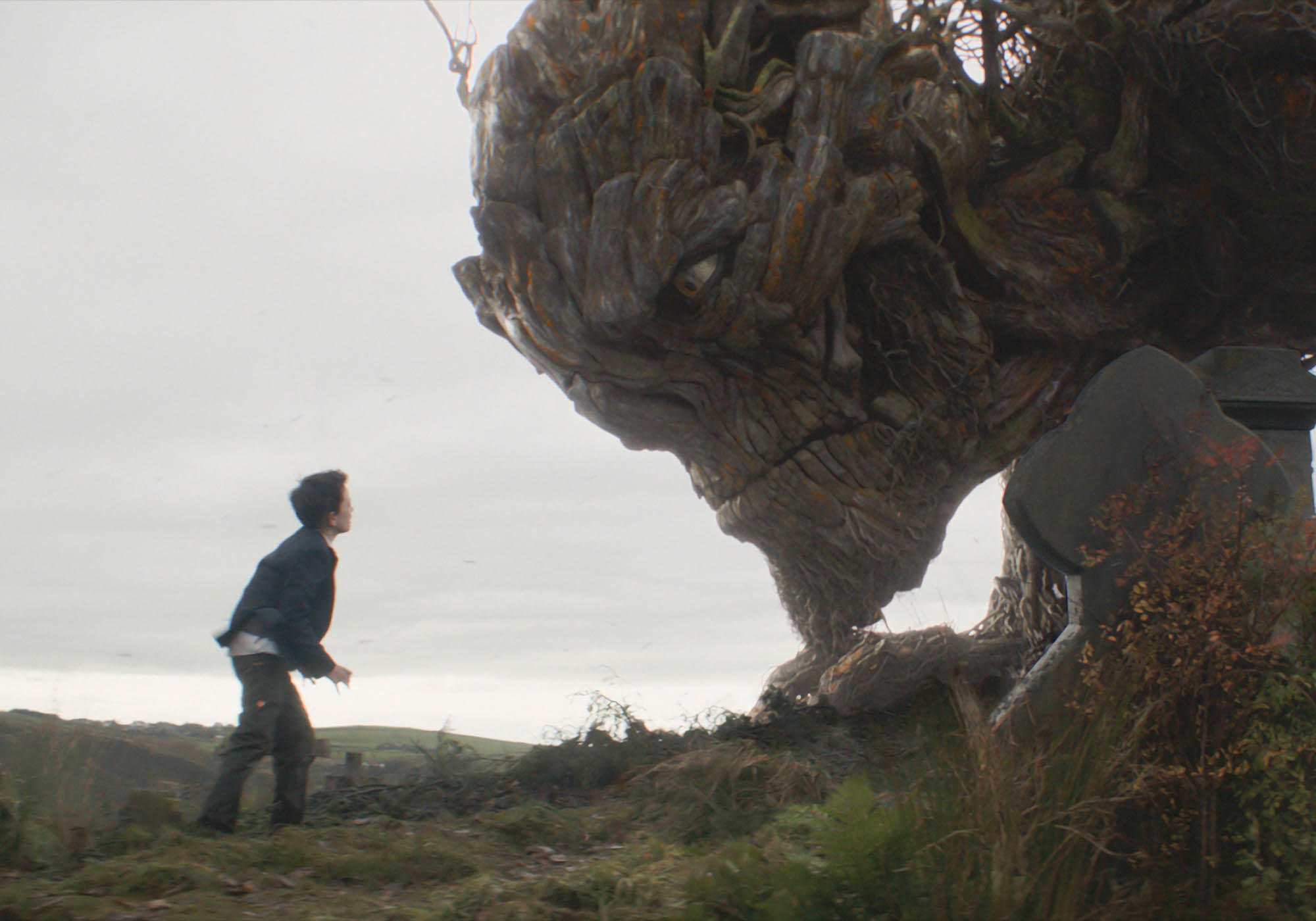 8 Great Trees That Come to Life in the Movies | Fandango
