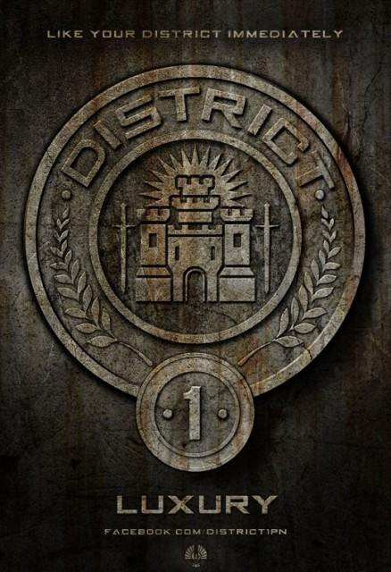 the different districts in the hunger games