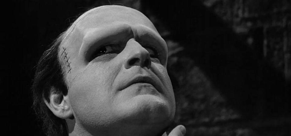 evolution of frankenstein Frankenstein - how does the monster change during the novel 'frankenstein' is one of the typical examples of that time which portrays the effects of these changes.
