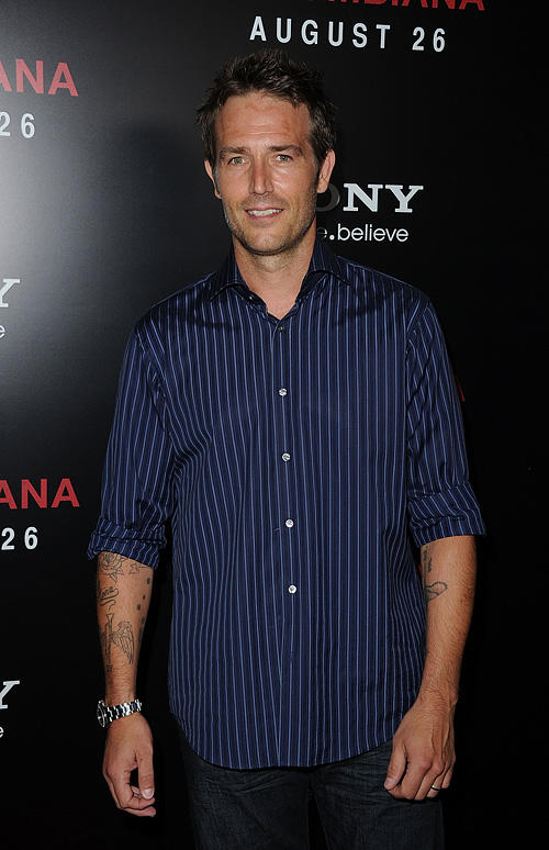 Michael Vartan at the California premiere of