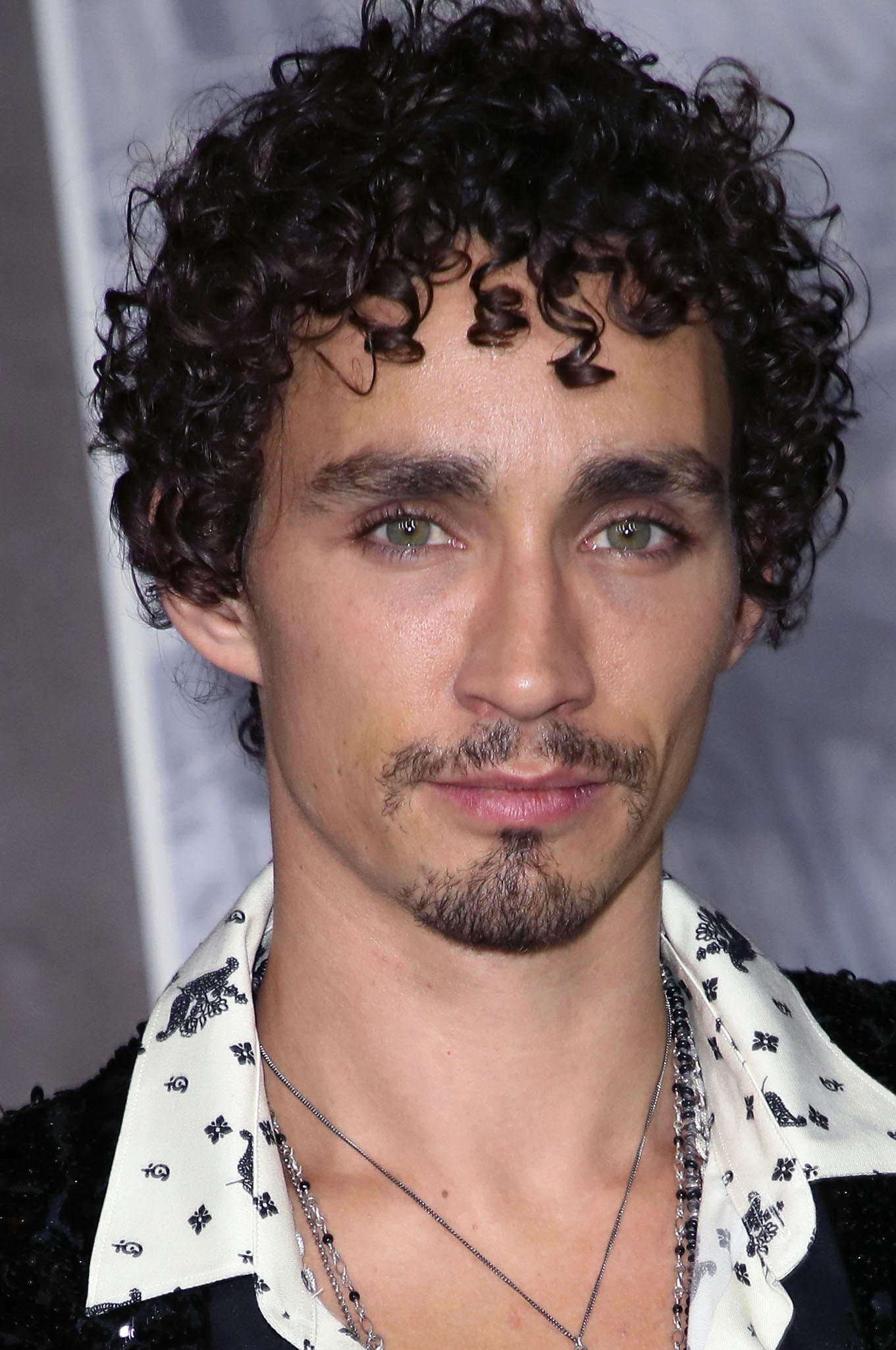 Robert Sheehan at the premiere of 'Mortal Engines' in Westwood, California.