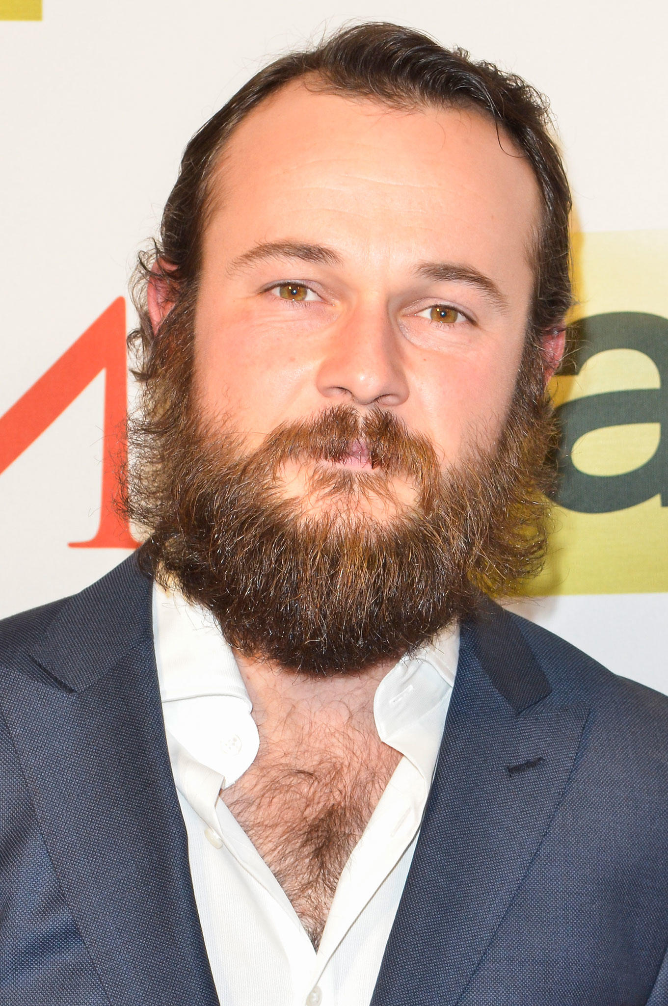 Daniel Henshall at the D.C. premiere of