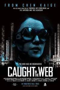 Caught in the Web Movie Poster