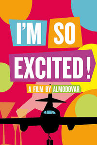 I'm So Excited! Movie Poster