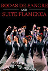 BODA de SANGRE/SUITE FLAMENCA Movie Poster
