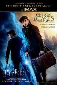 IMAX: Harry Potter Event Pass Movie Poster