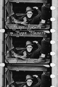 Silent Shorts in Rare Formats Movie Poster