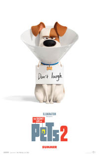 Fandango Early Access: The Secret Life of Pets 2 Movie Poster