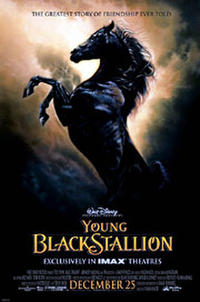 The Young Black Stallion IMAX Movie Poster