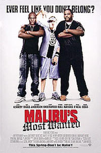Malibu's Most Wanted Movie Poster
