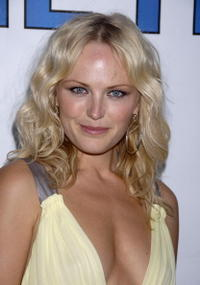 Actress Malin Akerman at the Hollywood premiere of