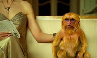 Nicole Kidman as Mrs. Coulter as she sits with her daemon the Golden Monkey in