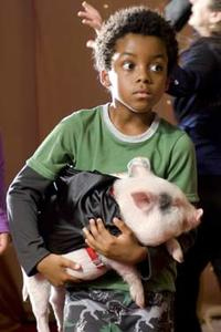 Albert the Pig and Eshaya Draper in