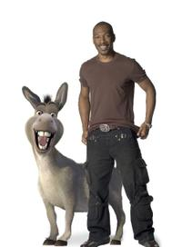 Eddie Murphy voices Donkey in